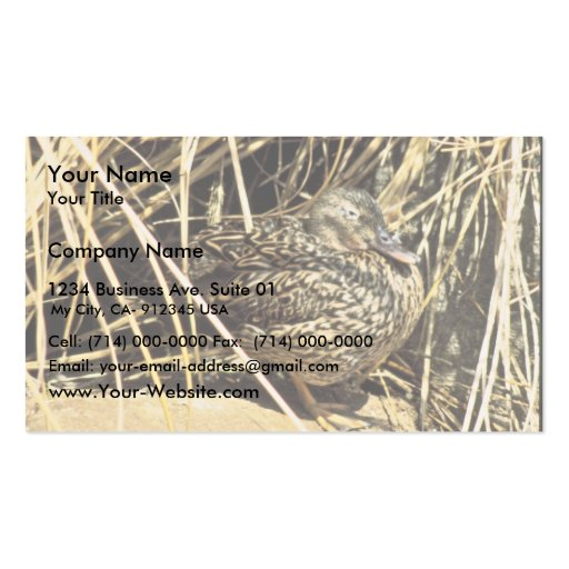 Hawaiian Duck (Koloa hen) Double-Sided Standard Business Cards (Pack Of 100)
