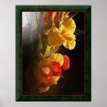 Hawaiian Flame Flowers Print