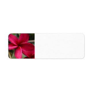 Hawaiian Flower Mailing Label