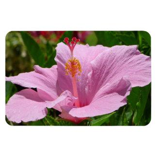 Hawaiian Flower Rectangular Photo Magnet