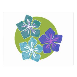 Hawaiian Flowers 1 Postcard