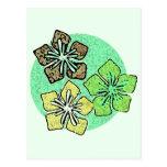 Hawaiian Flowers 3 Post Card