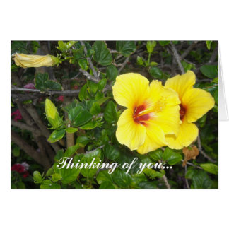 Hawaiian Flowers Card