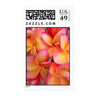 Hawaiian Frangipani Stamp
