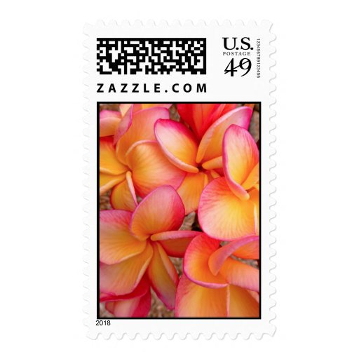 Hawaiian Frangipani Stamps