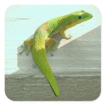Hawaiian gecko stickers