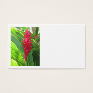 Hawaiian Ginger Business Card