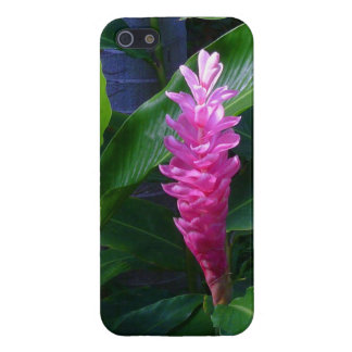 Hawaiian Ginger Case For iPhone SE/5/5s