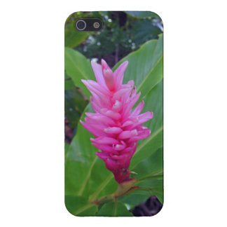 Hawaiian Ginger iPhone SE/5/5s Cover