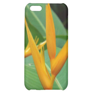 Hawaiian gold bird of paradise gift items case for iPhone 5C