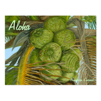 Hawaiian Green Coconut Postcard