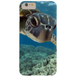 Hawaiian Green Sea Turtle Barely There iPhone 6 Plus Case
