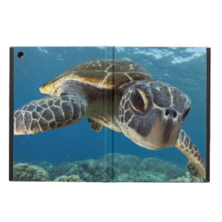 Hawaiian Green Sea Turtle Case For iPad Air
