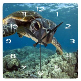 Hawaiian Green Sea Turtle Square Wall Clock