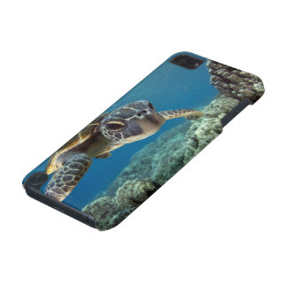Hawaiian Green Sea Turtle iPod Touch 5G Cases