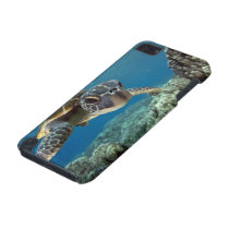 Hawaiian Green Sea Turtle iPod Touch 5G Cover