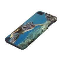 Hawaiian Green Sea Turtle iPod Touch 5G Cover