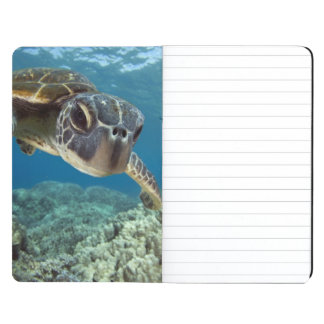 Hawaiian Green Sea Turtle Journal