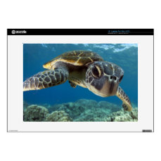 Hawaiian Green Sea Turtle Skin For Laptop