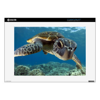 Hawaiian Green Sea Turtle Skin For Laptop