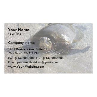 Hawaiian Green Sea Turtle Swimming On Beach Of Hal Business Cards
