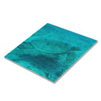 Hawaiian Green Sea Turtle Ceramic Tile