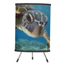 Hawaiian Green Sea Turtle Tripod Lamp