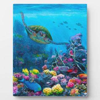 Hawaiian Green Sea Turtle Tropical Fish Reef Display Plaque
