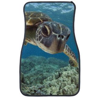 Hawaiian Green Sea Turtle Car Mat