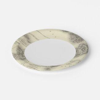 Hawaiian Group Or Sandwich Islands Paper Plate