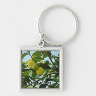 Hawaiian Guava Key Chain