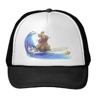 hAwAiiAn hAnDsTaNd Trucker Hat
