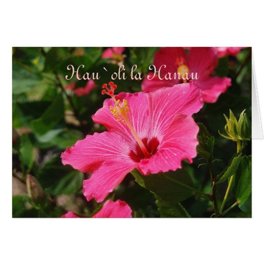 Hawaiian Happy Birthday Pink Striped Hibiscus Card