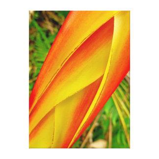 Hawaiian Heliconia Canvas Print