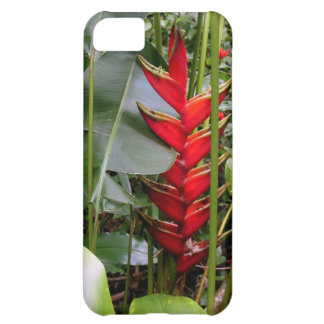 Hawaiian Heliconia Case For iPhone 5C