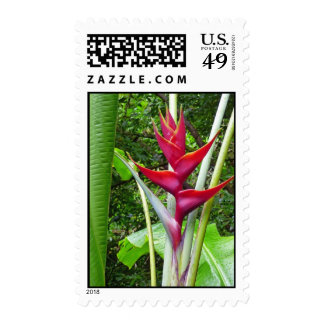 Hawaiian Heliconia Postage Stamp