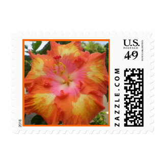 Hawaiian Hibiscus All Aglow Stamp