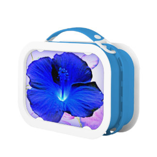 Hawaiian Hibiscus flower Lunchboxes