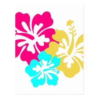 Hawaiian Hibiscus Flowers Postcard