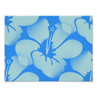 Hawaiian Hibiscus Flowers Poster