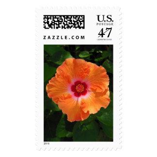 Hawaiian Hibiscus Postage