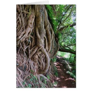 Hawaiian Hiking Trail Greeting Card