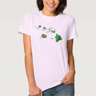 Hawaiian Islands with rarely seen Lei Island T-Shirt