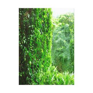 Hawaiian Jungle Vines Canvas Print