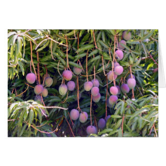 Hawaiian Mangoes Card
