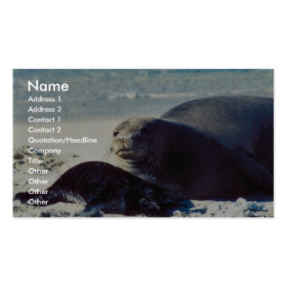 Hawaiian Monk Seal and Pup Business Cards