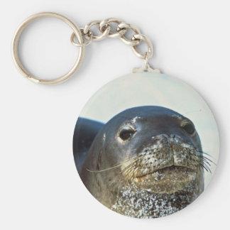 Hawaiian Monk Seal Basic Round Button Keychain