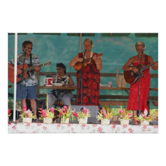 Hawaiian Music Poster