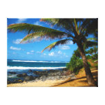 Hawaiian Palm Tree Wrapped Canvas Gallery Wrapped Canvas