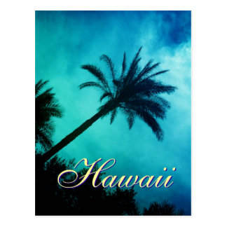 Hawaiian Palm Trees Postcard